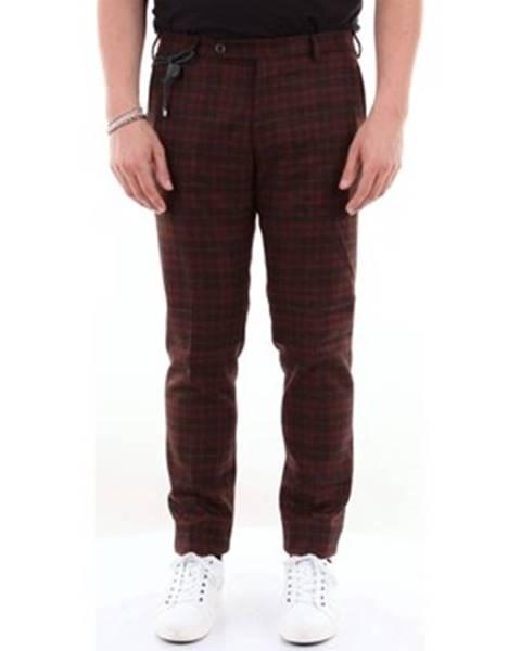 Viacfarebné nohavice Berwich