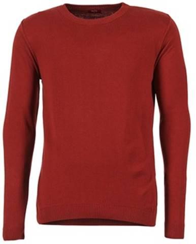 Červený sveter BOTD